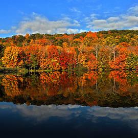 Autumnscape by Karol Livote