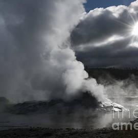 Sandra Bronstein - Awakening in Yellowstone