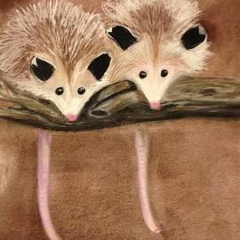 Renee Michelle Wenker - Baby Possums