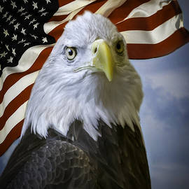 F Leblanc - Bald Eagle and Flag