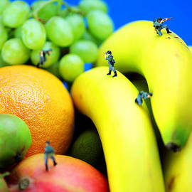 Paul Ge - Band of brothers among fruits jungle little people on food