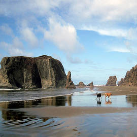 Michele Avanti - Bandon Beach Oregon Doodle Heaven