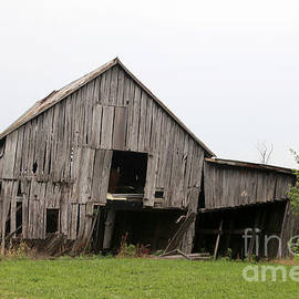 Barn 2 by Dwight Cook