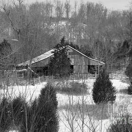 Barn in Kentucky no 12 by Dwight Cook
