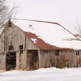 Barn in Kentucky no 16 by Dwight Cook