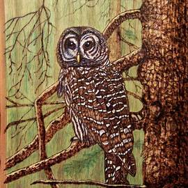 Danette Smith - Barred Owl