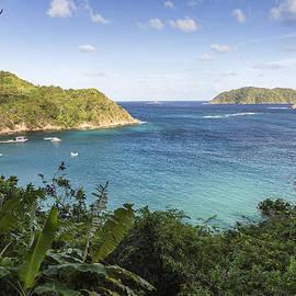 Hugh Stickney - Batteaux Bay and Little Tobago Island