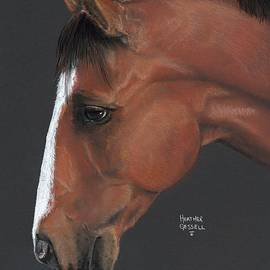 Heather Gessell - Bay Horse