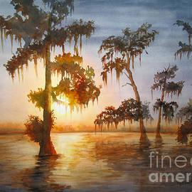 Bayou Sunset by Mohamed Hirji