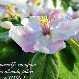 Jo Ann - Be yourself flower