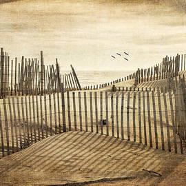 Beach Shadows by Cathy Kovarik