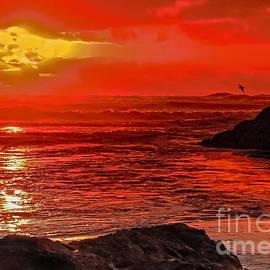 Beach Sunset by Robert Bales