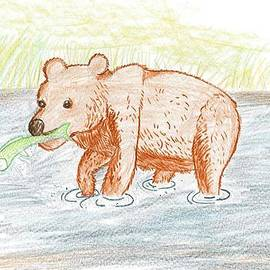 Bear Fishing by Ethan Chaupiz