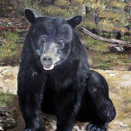 Bear - Wildlife Art - Ursus Americanus by Jan Dappen