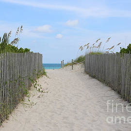 Beautiful Beach Day by Carol Groenen