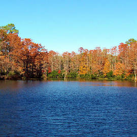 Cynthia Guinn - Beautiful Lake