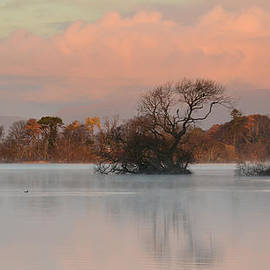 Barbara Walsh - Beautiful morning
