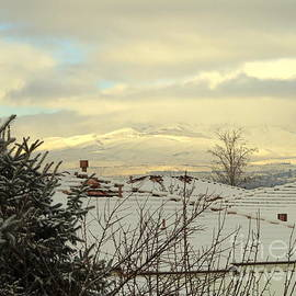 Phyllis Kaltenbach - Beautiful Sparkling Snow
