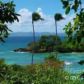 John Malone - Beautiful Tropical Scene
