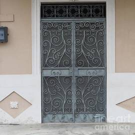 Beauty Iron Doors by Vladimir Berrio Lemm