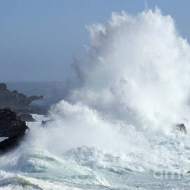 Beauty Of California Salt Point Wave Action by Bob Christopher