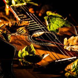 Gerald Kloss - Beauty of string