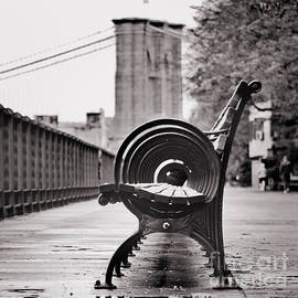 Bench's Circles and Brooklyn Bridge - Brooklyn Heights Promenade - New York City by Carlos Alkmin