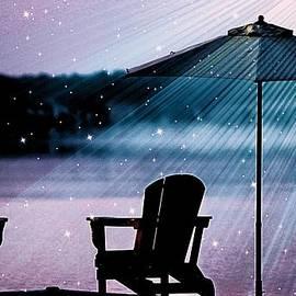 Best Seat In Muskoka by Al Fritz