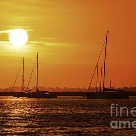 Best Spot Under The Sun by Joe Geraci