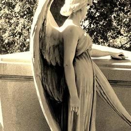 Cindy Fleener - Beyond the Veil