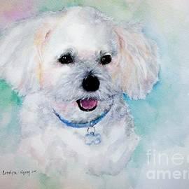 Bichon Frise Watercolor by Carolyn Gray