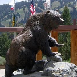 Big Bear by Barbie Corbett-Newmin