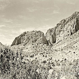 Big Bend National Park In Sepia Tone Color by M K Miller