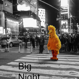 Big Birds Big Night Out in NYC Black and White by Scott Campbell