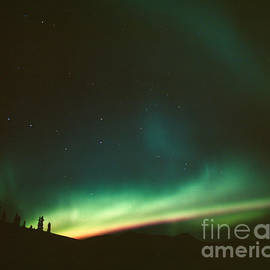Big Dipper above Northern Lights by Tracy Knauer