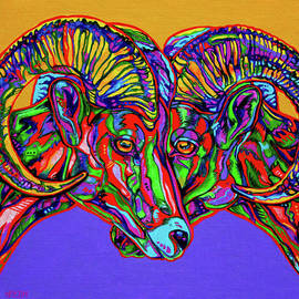 Derrick Higgins - Bighorn Sheep