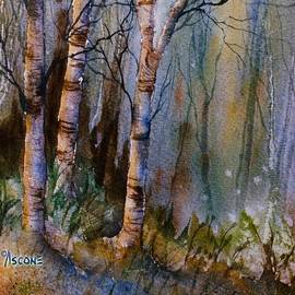 Teresa Ascone - Birch Shadows