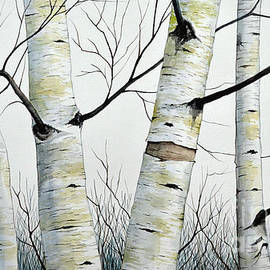 Birch Trees in the Forest in watercolor by Christopher Shellhammer
