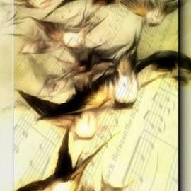 Gun Legler - Bird Symphony