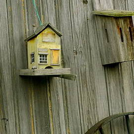 Birdhouse Fun by Kathy Barney
