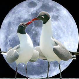 Mariarosa Rockefeller - Birds Do It...