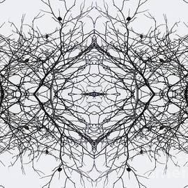 Sarah Loft - Birds in the Branches 4