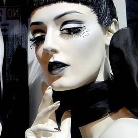 Ed Weidman - Black And White Beauty