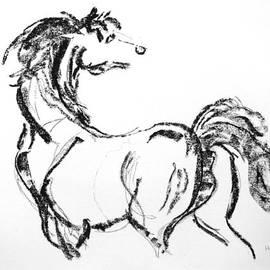 Holly Wright - Black Horse