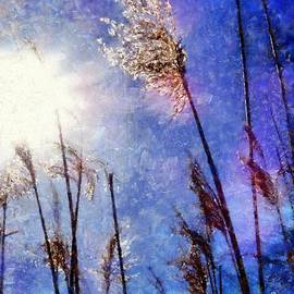 Janine Riley - Blades of Glory Marsh Grass