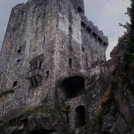 Richard Andrews - Blarney Castle