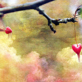 Linda Sannuti - Bleeding Hearts From Above