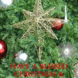 Barbie Corbett-Newmin - Blessed Christmas card