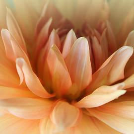 The Art Of Marilyn Ridoutt-Greene - Blessed