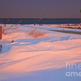 Blizzard Juno Sunset by Amazing Jules